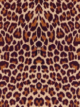 Picture of ThermoFlex FASHION Pattern PSV - Leopard